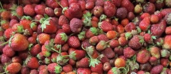 Густое варенье из клубники на зиму – 15 рецептов вкусного варенья с целыми ягодами