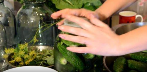 Салаты из огурцов на зиму – 17 простых и вкусных рецептов