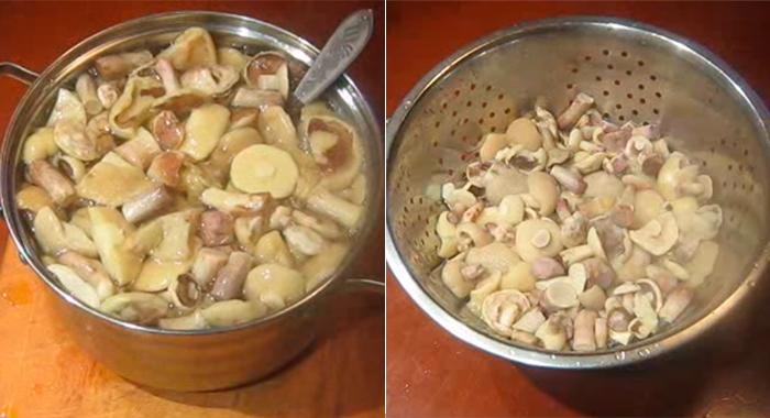 Маринованные маслята на зиму - 8 рецептов с фото