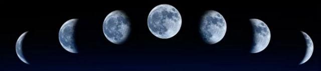 Когда сажать чеснок под зиму 2020 по лунному календарю - лучшие даты