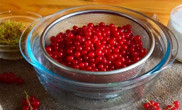 Компот из красной смородины на зиму - 11 простых рецептов с фото