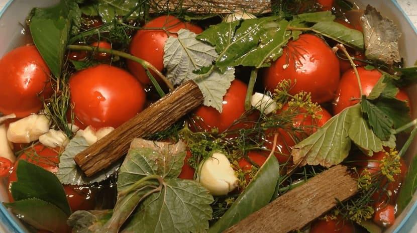 Малосольные помидоры - экспресс-рецепт (классический)