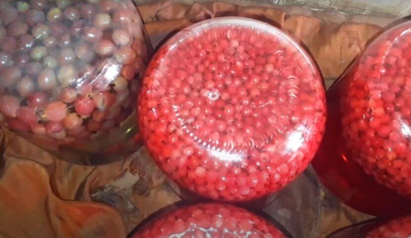 Простой рецепт компота из красной смородины на веточках