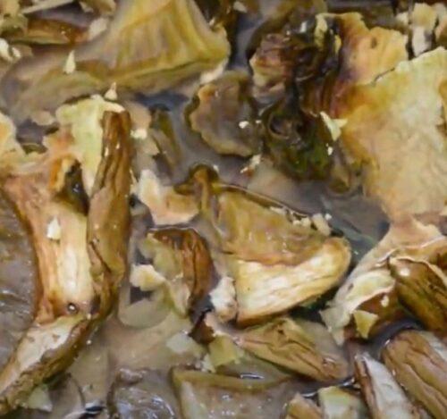 Как варить сушеные грибы