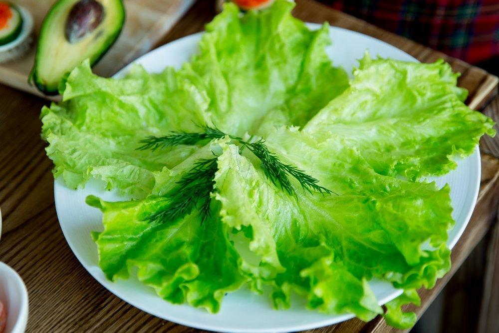 Листы салата